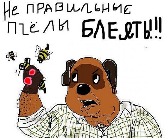 Не правильные пчелы, блеять!