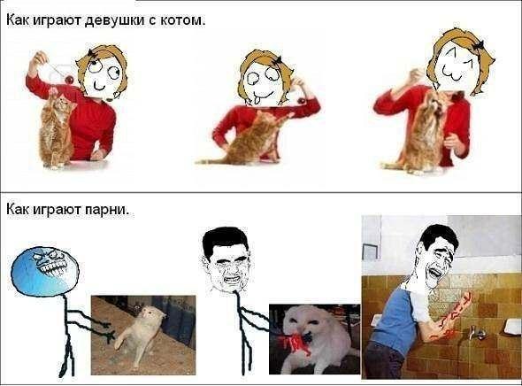 Комиксы фууу про котов