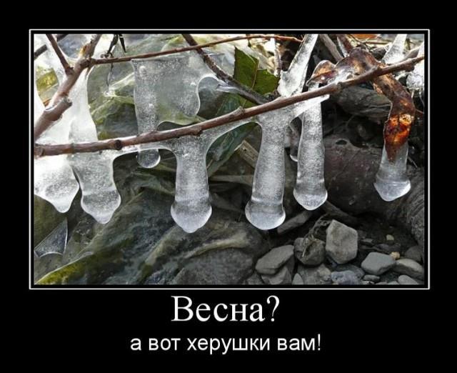 Демотиваторы про весну