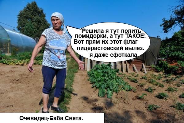 Очевидец - Баба Света: Решила я тут полить помидорки, а тут ТАКОЕ! Вот прям их этот флаг вылез. Я даже сфоткала.